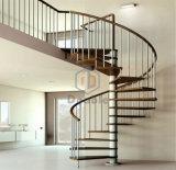 Escalera elegante clásica de madera sólida del acero inoxidable del América-Estilo