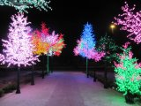 Yaye 18 Top Sell Ce & RoHS Aprobación LED Palmera, al aire libre LED Palmera para Jardín Decorativo
