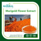 [مريغلد] زهرة مقتطف برتقالين مسحوق لأنّ تغذية حيوانيّة