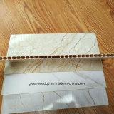 Les panneaux composites en plastique de pierre/ SPC, WPC, panneaux muraux en PVC