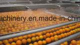 De volledige Lijn van de Verwerking van het Jus d'orange