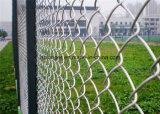 Ограждать ячеистой сети звена цепи PVC/ячеистая сеть диаманта гальванизированные Coaed