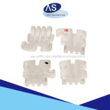 Parentesi di ceramica dentali ortodontiche con il Ce della FDA