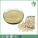 백색 신장 콩 추출 Phaseolin 1%~2% 의 체중 감소