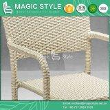 屋外のビストロの椅子のための藤の籐椅子