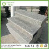 Onze Eigen Treden van het Graniet van de Steengroeve Natuurlijke G623/Bèta Rosa