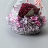 La promoción preservó el regalo de la flor con la luz para la boda