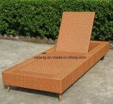 Auto sala de estar ao ar livre traseira padusta da piscina com a sala de estar da praia da roda com roda (YTF888T)