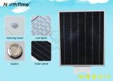 Réverbère solaire extérieur du prix usine 15W IP65 Bridgelux DEL