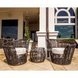 Qualidade superior do mobiliário de jardim exterior de vime sintético Café (YT606)