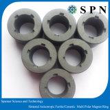 영원한 알파철 이방성 자석은 모터를 위한 /Ceramic 반지를 둥글게 된다