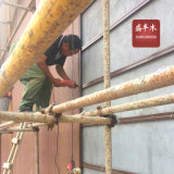 Водонепроницаемый наружные стеновые панели строительные материалы WPC стены оболочка