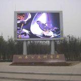 Indicador de diodo emissor de luz do anúncio ao ar livre de cor cheia de HD P6