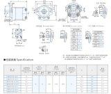 Série de Cbh da bomba de engrenagem para o sistema hidráulico de alta pressão
