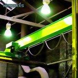 クレーンデッサンが付いているサービスLdpのよいタイプ単一のガードの天井クレーン