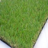 زهرة [سريس-ب] عشب اصطناعيّة ([بسب])