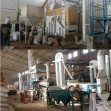 Planta da limpeza da semente do milho da planta de processamento da semente do Quinoa do sésamo (5XZC-5X)