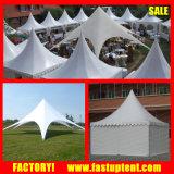 Zelt Star тень палатку и Paogda Палатка для свадьбы в рамке