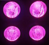 Due canali coltivano il LED si sviluppano/indicatori luminosi/lampade della pianta