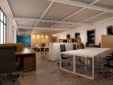 現代様式の優れたスタッフの区分ワークステーション事務机(PS-AWK-016)