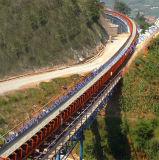 Высокотехнологичная международная изогнутая система транспортера для сбывания