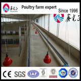 Prefabricados de estructura de acero automático de la granja avícola la construcción de Galpón pollo broiler House Design