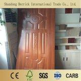 خارجيّة /Interior باب خشبيّة [سشد] باب تصاميم مع طبيعة قشرة