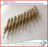 Acier du carbone de pente de la qualité 4.8 ou solides solubles 304 (A2) ou solides solubles de haute résistance (316) Anchorbolt/Gecko de marteau