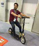 Motorino elettrico praticante il surfing adulto pieghevole del motorino di scossa delle 2 rotelle (ES1201)
