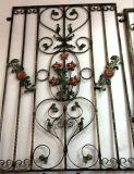 Modèle décoratif élégant de gril de guichet de fer