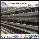 Cage de poulet de la couche de batterie automatique système pour la vente en Chine