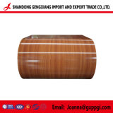 Modèle de bois le matériau de couverture PPGI/PPGL Bobines en acier