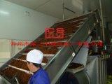 杏子の乾燥機械