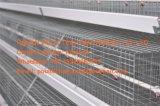 een systeem van de Kooi van de Kip van de Laag van het Type (Kip) op de Algemene Vergadering die van het Gevogelte wordt gebruikt