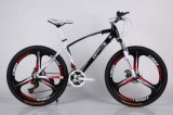 Châssis en acier 21 Vélo de montagne de vitesse