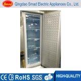 Lowes Mini réfrigérateur et congélateur léger petit crème glacé Congélateur