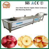 As maçãs Blancher vapor automática contínua de vapor da máquina de branqueamento da Correia