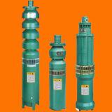 Qjの潅漑のステンレス鋼シリンダー浸水許容の深い井戸ポンプ