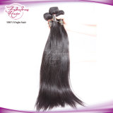 Double Drawn 100% Raw Virgin Brazilian Straight Hair