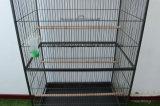 中国の鳥籠のLageの金属のPetcage Pattotのケージ