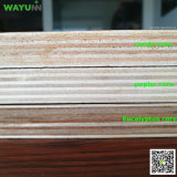 中国リンイーの製造所の堅い木製の製材コアポプラのコマーシャルの合板