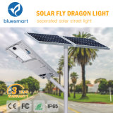 Integrated/universe in Two solarly sensor outdoor LED Street guards Light