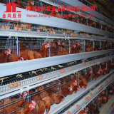 Galvanziedタイプ肉焼き器電池ケージの養鶏場の家禽の鳥小屋