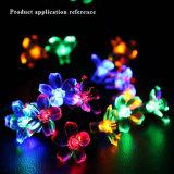 Pfirsich-Hochzeitsfest Multicolorful Birnen-Kugel-Laterne-Lampen-Licht der Bodenwand-Solarzeichenkette-Streifen-Dekoration-LED