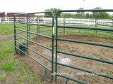 녹색 분말 코팅 말 가축 우리 위원회