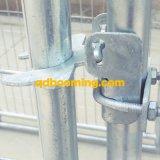 Établissements galvanisés de passage de crabot de maillon de chaîne avec le toit