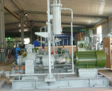 Bomba de proceso petroquímica