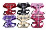De nylon Producten van het Huisdier van de Kraag van het Huisdier van de Halsband van de Kraag van de Kat