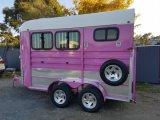 ピンクのカスタマイズされたカラーの2頭の馬の浮遊物
