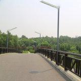 fornecedor ao ar livre solar Integrated de China da lâmpada do caminho da vila da iluminação da luz de rua do diodo emissor de luz 30W